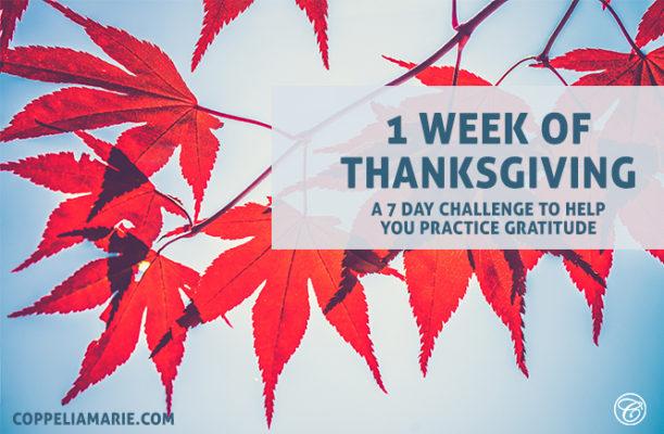 1 Week of Thanksgiving Challenge