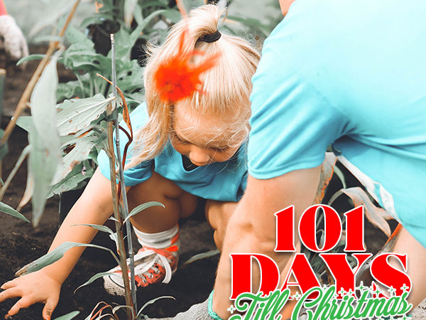 101 Days till Christmas Day 81 Fall Service and Volunteer Projects