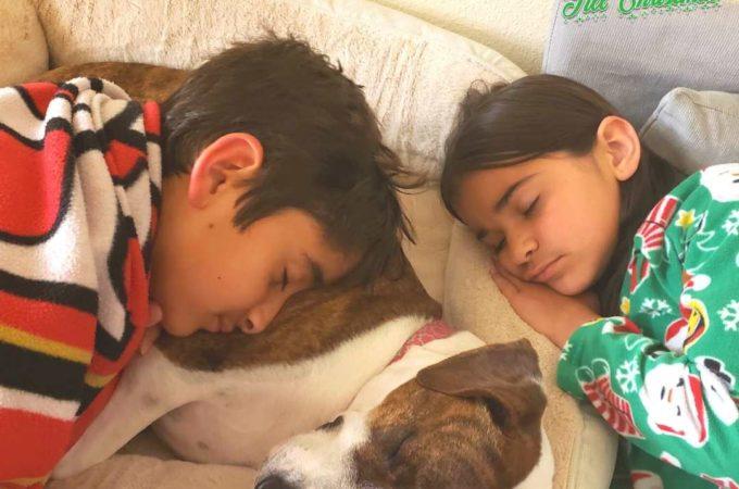 101 Days till Christmas Day 53 Daylight Saving TIme Better Sleep Tips
